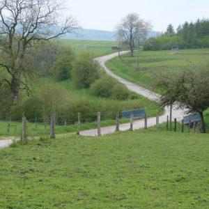 Chemin près de la ferme